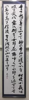 読売:幾島咲希.JPG