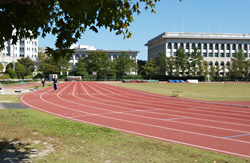 School of Health and Sport Sciences