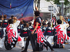 2016晴地舞どまつり2-a.jpg