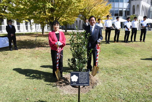 金メダルの樹.JPG
