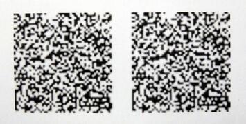 ランダムドット・ステレオグラム (1).JPG